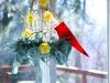 cardinal1IMG_6883_500